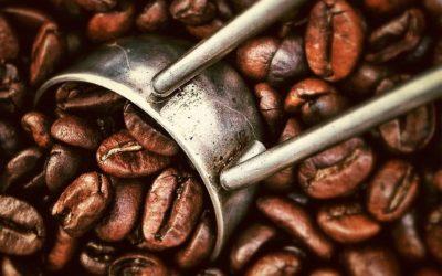 ¿Qué es el café y sus efectos?